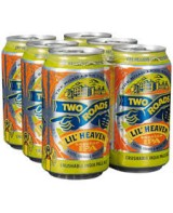 Two Roads Two Die Can 6pk